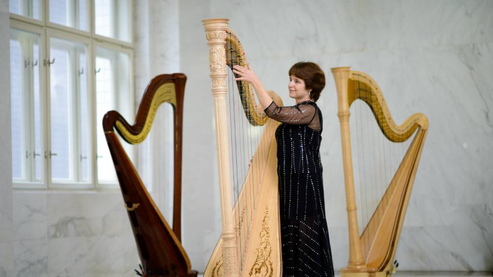 My jsme SOČR - harfa